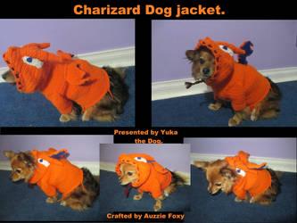 Charizard Crochet dog Jacket by Auzzie-Foxy