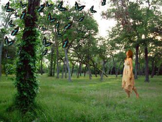 Enchanted Forest by streboradnama