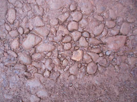 Raw Ground Texture Pebble by Meta-Stock