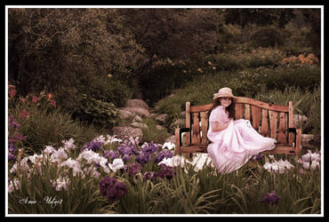 My Little Garden by ustar2