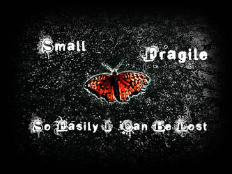 Butterfly Edit 1 With Text by asylum-inmate