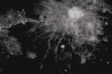 Axone by Liliframboise
