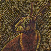 Cowper's Hare by Vikkki