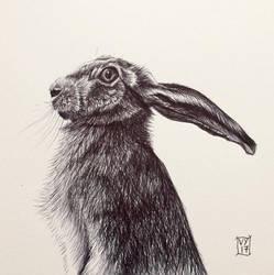 Biro Hare by Vikkki