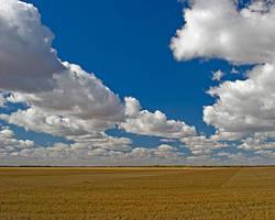 Living Sky by WayneBenedet