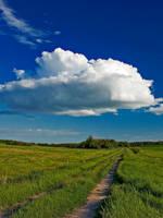 Path of History by WayneBenedet