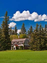 Prairie Whispers (2621) by WayneBenedet