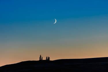 Sister Moon (WAB2065) by WayneBenedet