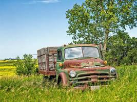 Dodge (WAB4493) by WayneBenedet