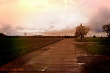 Spring Path by NickysChannel13