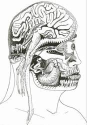 Headtrip by rhesusmonkey