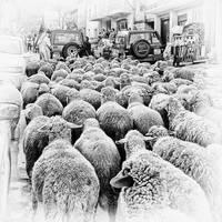 traffic jam by BobRock99