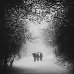 Beware of light by BobRock99