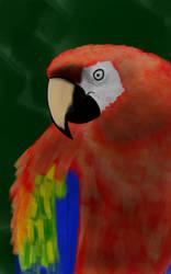 parrot  by luginsculpture47