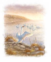 Priemysh.  Swans by ArtGalla