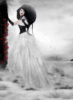 .Evanescence by Flore-stock