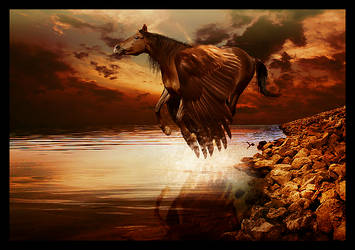 Pegasus by ierpier
