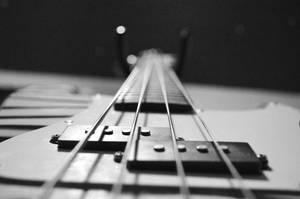 Bass by FrankTheSixFootBunny