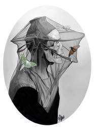 Veil by ctyler