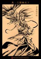 Shin Sangoku Musou 3 Sima-Yi by SatoakiAmatatsu