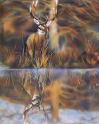 Wild Deer by DanMcManis