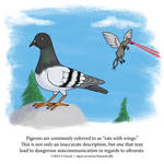 A Fantastically False Fact About Pigeons by Zombie-Kawakami