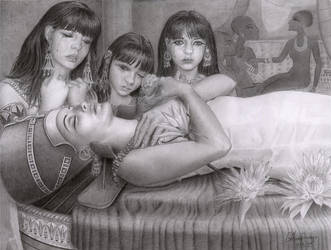 Nefertiti by CaroleHumphreys