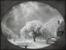 Winters Day by Notvitruvian