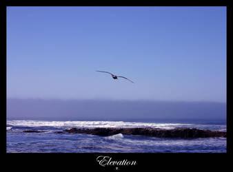 Elevation by fallingstar