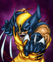 Wolverine Colored by likwidlead