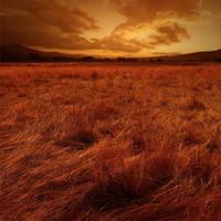 DREAMSCAPE V by Karezoid