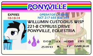 Willow's License by partiallyBatty