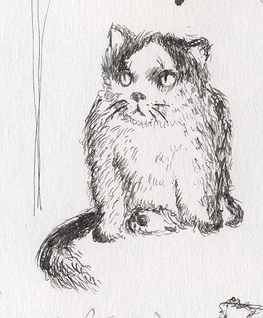 msChimotoma's Profile Picture