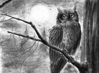 The Owl by xibalbha