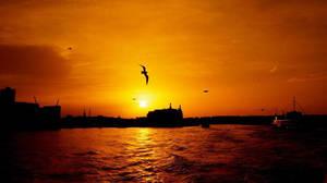 Sunrise over Kadikoy by Navvyblue