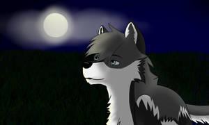 Wolf IDK by XxRoxanxX