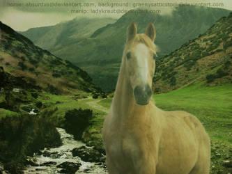 Horse Portrait 2 by ladykraut