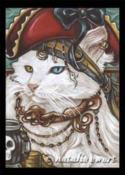 Pirate Cats 1 by natamon