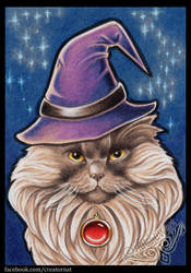 Ali the Wizard Cat by natamon