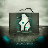 Partial vision by emanrabiah