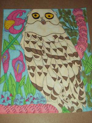 Hedwig the Owl-version 1 by SeraphanRaziel