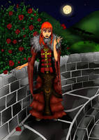 Castle: Dark Princess by pun