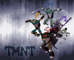 TMNT: ShellShock by SickRogue