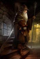 Wizard_02 by WhoAmI01