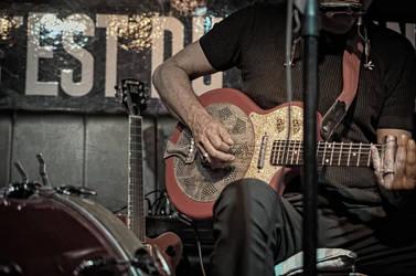 Blues Singer - FJ - Guitar by daemonkarl