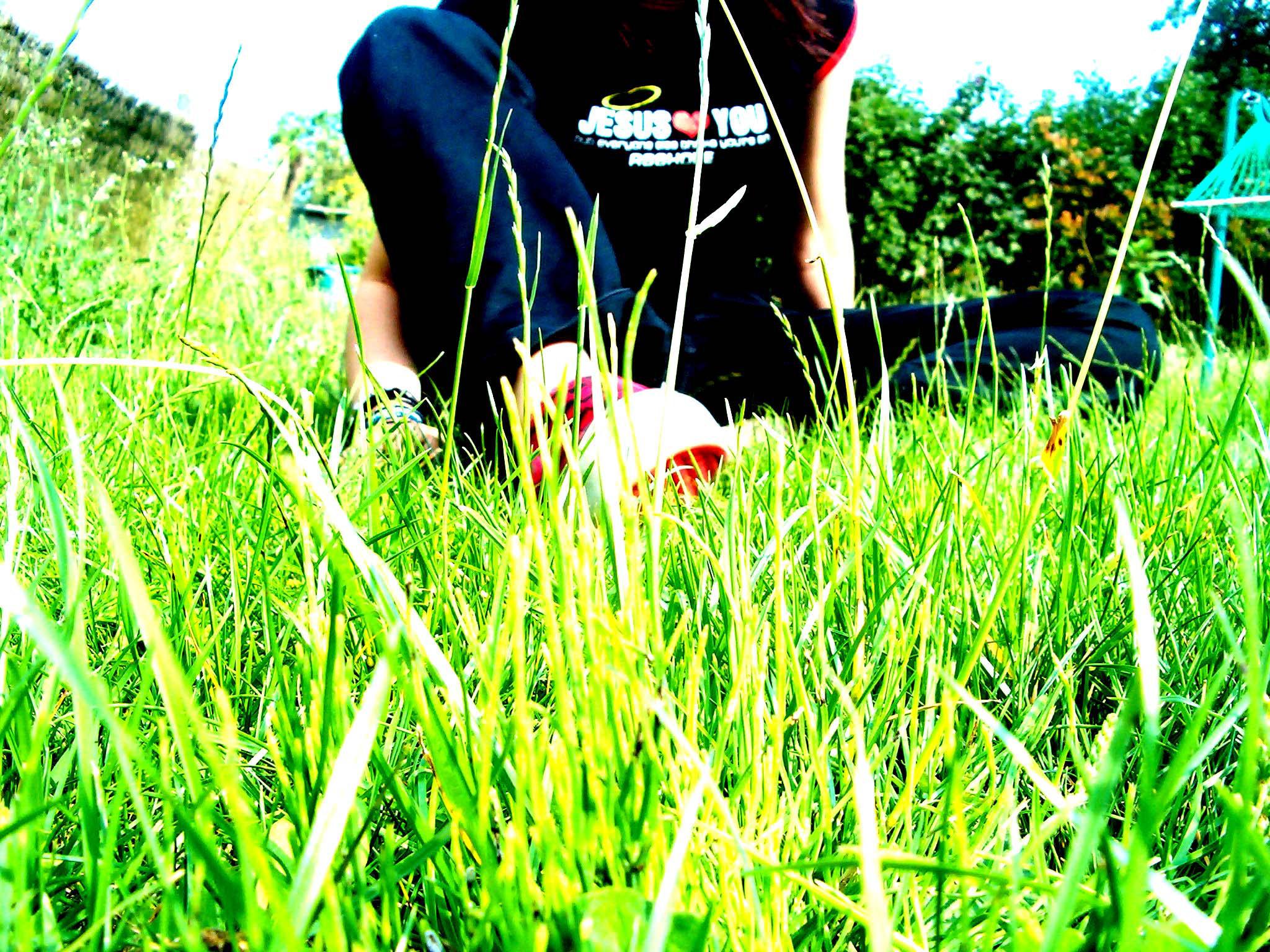 green green grass by GODDAMNGODDAMN