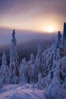 Winter Sunrise by Omelettu