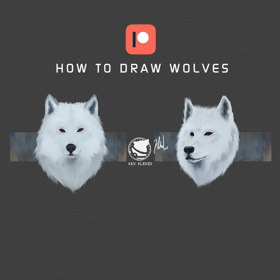 How to draw wolves Patreon Reward  by klehid