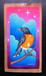 Robin by EhrenThibs