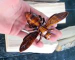 Wooden bee by JonasOlsenWoodcraft